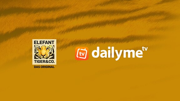 Elefant, Tiger & Co. bei Dailyme TV