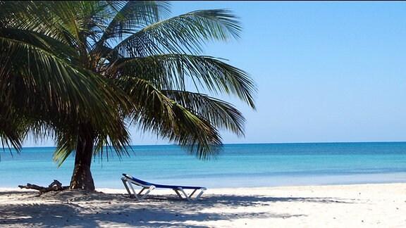 Ein einsamer Sandstrand am blauen Meer mit großen Palmen und einer Strandliege