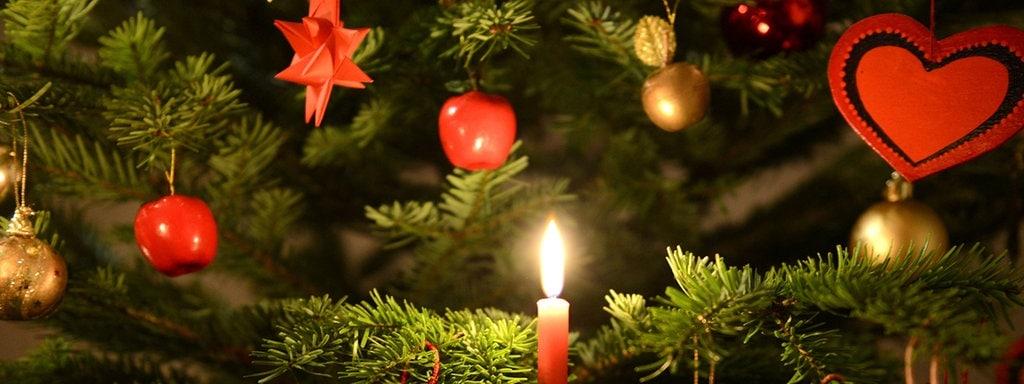 Geschichte Weihnachtsbaum.Achtung Ein Baum Trinkt Nicht Er Sauft Mdr De