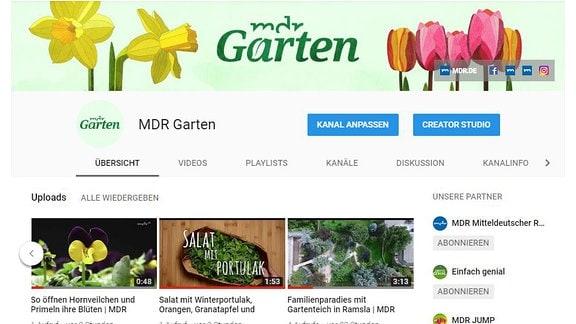 Mdr Garten Der Garten Ratgeber Im Mdr Fernsehen Und Im Internet