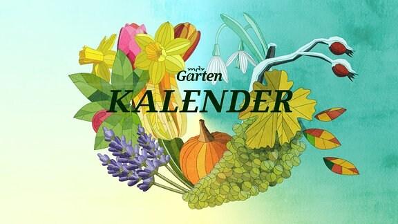 Der Mdr Gartenkalender Gartentipps Für Mai Mdrde