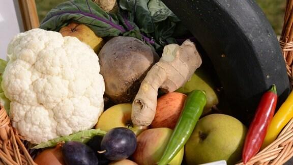 Korb mit verschiedenem Gemüse und Obst