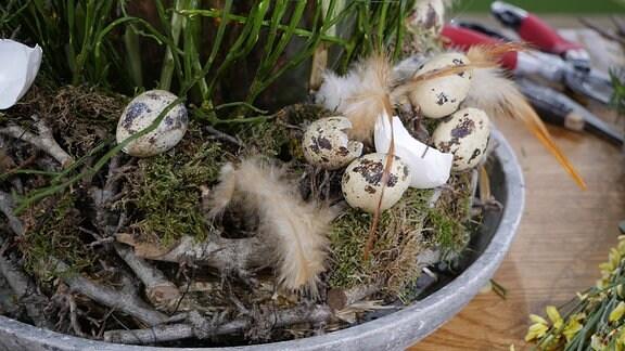 Eine Frau und ein Mann gestalten ein Ostergesteck. Mit Federn und Wachteleiern dekoriertes Osternest.