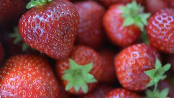 Erdbeeren (nah)