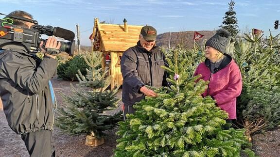 Ein Kameramann filmt Moderatorin Diana Fritzsche-Grimmig, die mit dem Weihnachtsbaumexperten Hermann Stuckart spricht. Sie stehen an einer Tanne.