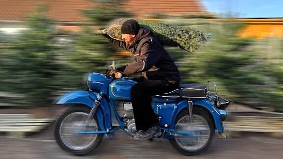 Ein Mann sitzt auf einem Motorrad und transportiert einen Weihnachtsbaum auf der Schulter.