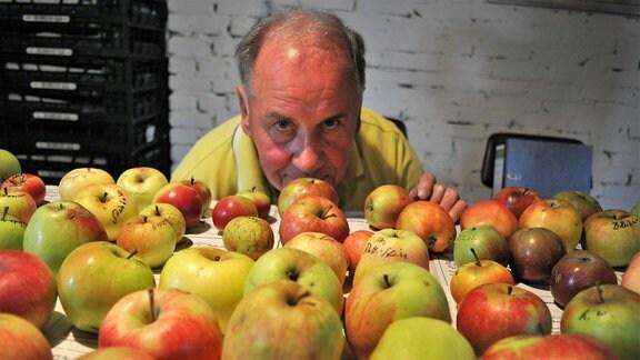 Der Pomologe und Apfel-Experte Hans-Jürgen Mortag hinter einem Tisch voller verschiedener Äpfel