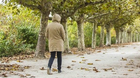 Spaziergang - spazieren - Herbst