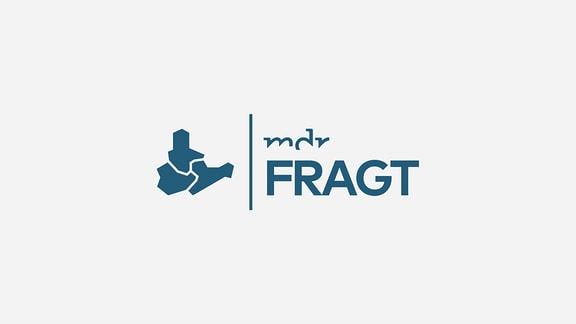 Logo: MDR fragt