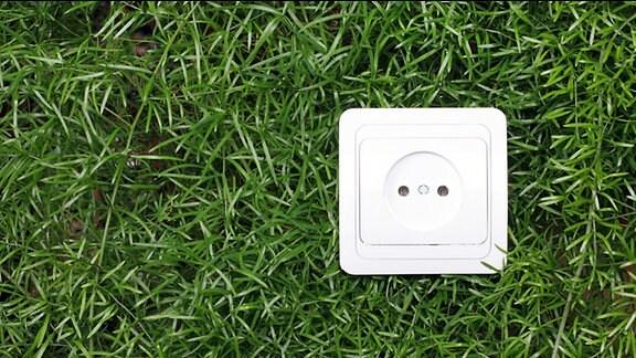 Illustration -  Eine Steckdose in einer Grasfläche.