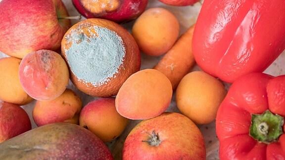 Nahaufnahme von schimmligen Obst und Gemüse.