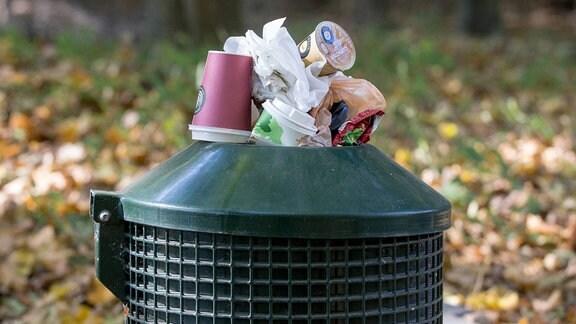 Überfüllter Abfalleimer mit Kaffeebechern und Tüten in einem Waldstück