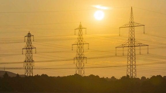Sromleitungen im Gegenlich der Sonne sind auf einem Feld.