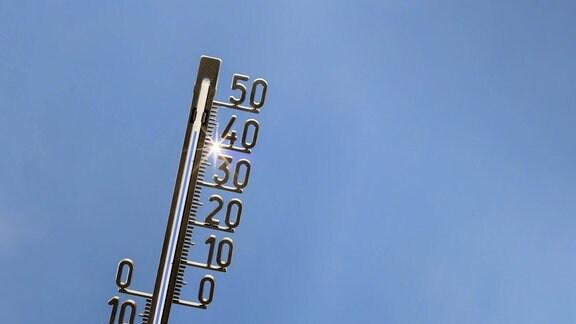 Sommerhitze in Europa, und in Deutschland steigt das Thermometer auf Werte über 40 Grad.