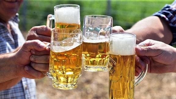 Männer stoßen mit Biergläsern an.