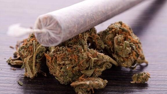 Ein Joint auf getrockneten Cannabisblüten.