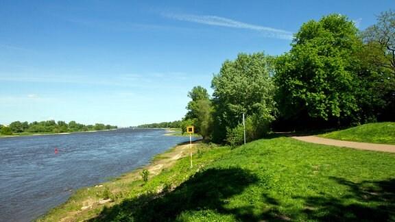 Der Elberadweg am östlichen Ufer der Elbe in Magdeburg.