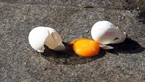 Ein kaputtes Ei liegt auf dem Boden.