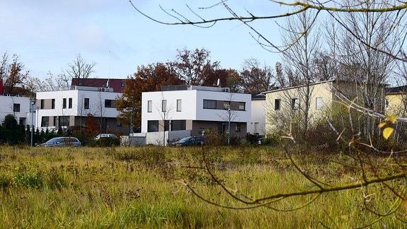 Häuser im halleschen Stadtteil Heide-Süd.