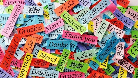 Auf kleinen Zetteln steht Danke in verschiedenen Sprachen.