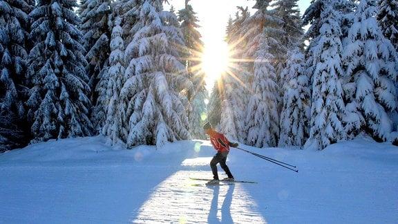 Ein Langläufer dreht im Skistadion von Mühlleithen seine Runden.