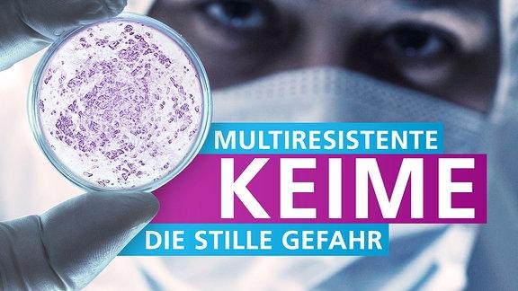 Keime auf einem Petrischale, daneben die Schrift, Multiresistente Keime - die stille Gefahr.