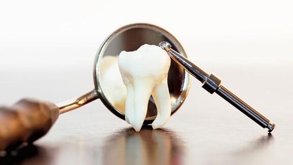 Weisheitszahn und Zahnarzt-Instrumente