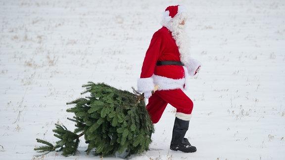 Weihnachtsmann mit Baum im Schnee.