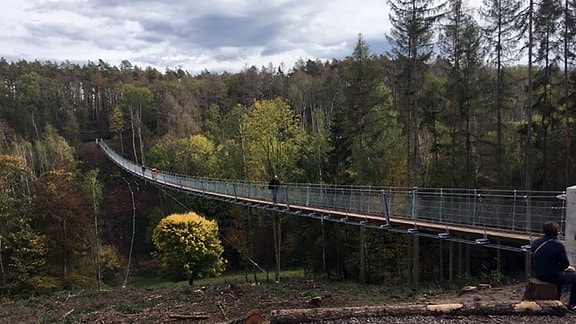 Hängebrücke im Wald