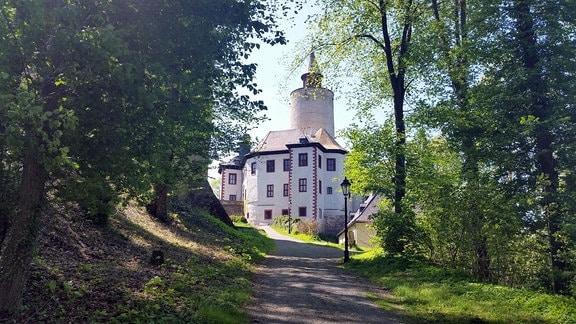 Eine Burg mit einem Turm in der Mitte. Zu der Burg führt ein Weg zwischen Bäumen hinauf.