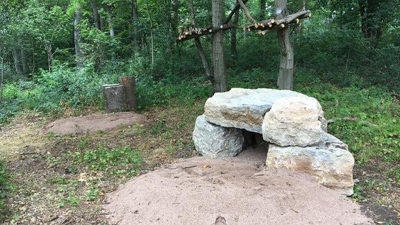 Das Außengehege ist rund 4.000 Quadratmeter groß und bietet neben natürlichem Wald auch einige Extra-Liegeplätze für die Luchse: Sandflächen, Steine und Kletterbäume