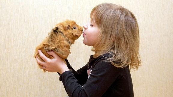 Mädchen kuschelt mit einem Meerschweinchen