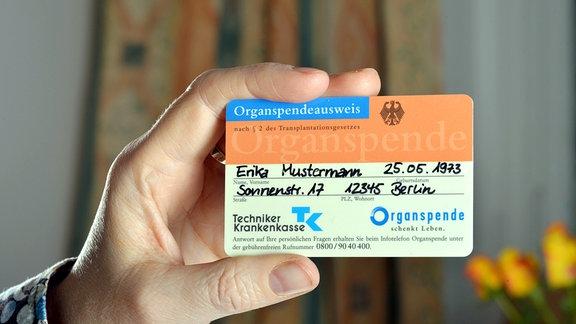 Eine Hand hält einen Organspendeausweis.