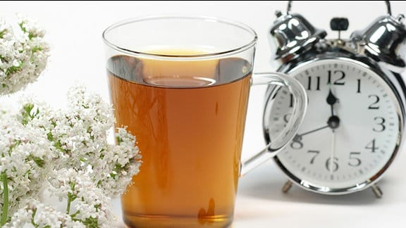 Baldrian, eine Glas Tee und ein Wecker stehen auf einen Tisch.