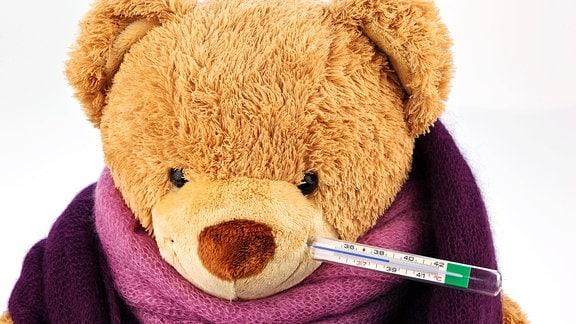 Ein Bär aus Plüsch mit einem Fieber Thermometer im Mund.
