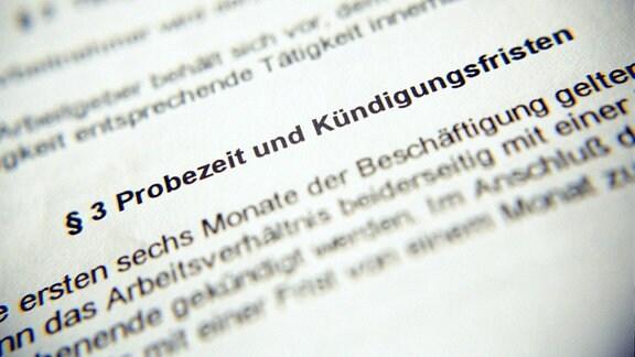 Absatz 'Probezeiten und Kündigungsfristen' in einem Arbeitsvertrag