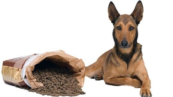 Ein Hund sitzt neben einer offenen Packung Hundefutter.