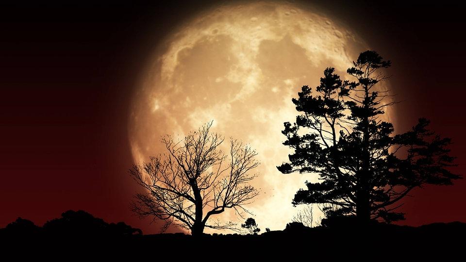 3 Phänomene – 6 Antworten: Blue Moon, Supermond und Mondfinsternis  | MDR.DE