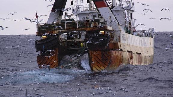 Ein Fischerboot von hinten