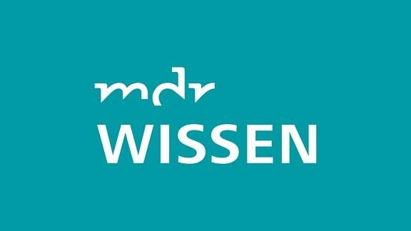 """Ein Schriftzug """"MDR Wissen""""."""