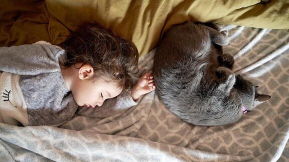 Ein kleines Kind liegt mit einer Katze auf dem Bett und schläft.